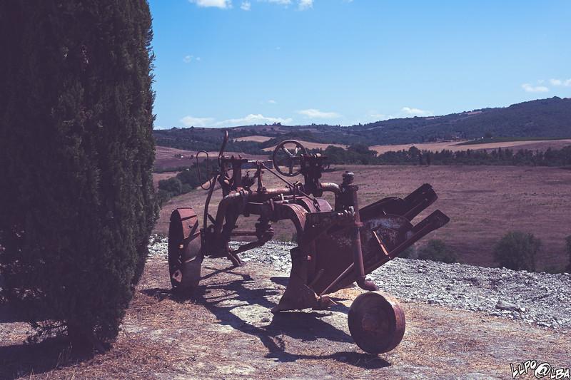 valdorcia-6532.jpg
