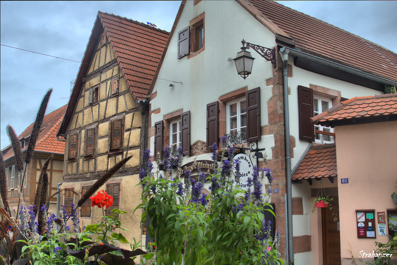 St Hippolyte, Alsace Wine Route, Alsace, France, 09/03/2018 This work is licensed under a Creative Commons Attribution- NonCommercial 4.0 International License