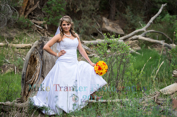 Darci Mincic Bridal Portrait