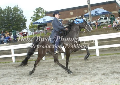 CLASS 9  OPEN PARK PERFROMANCE SPECIALTY
