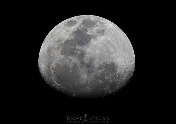 Lunar Love