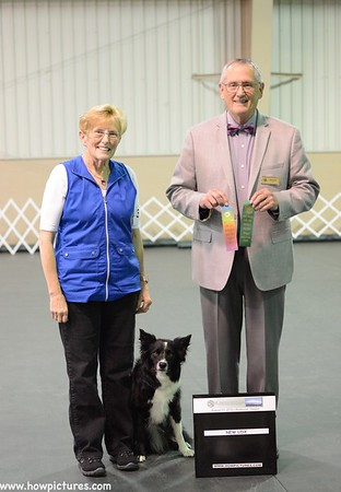MBKC Aug 2019 Obedience / Rally Trials Win Shots