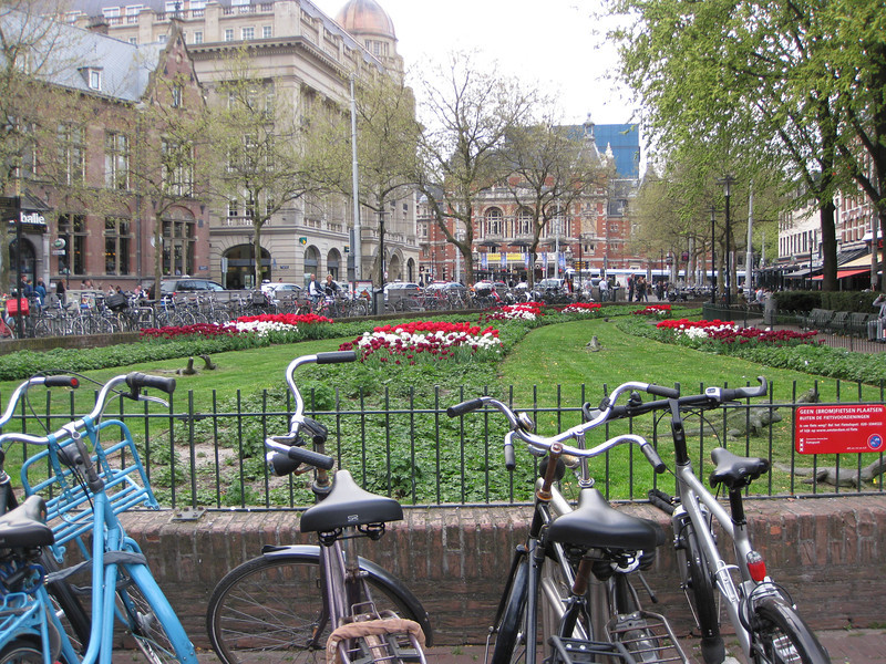 Tulips and bikes at Leidseplein (Tuesday)