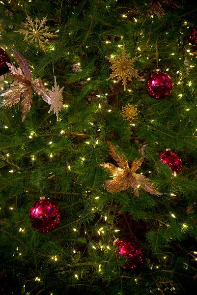 HolidayFest516.jpg