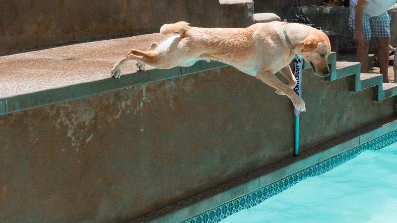 max-diving.jpg