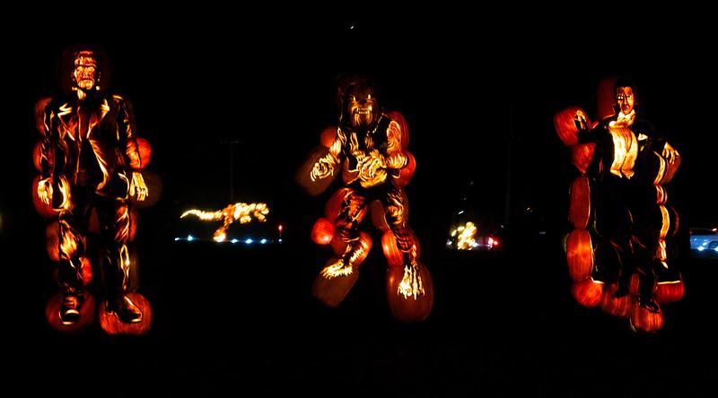 PumpkinsAfterDark16.jpg