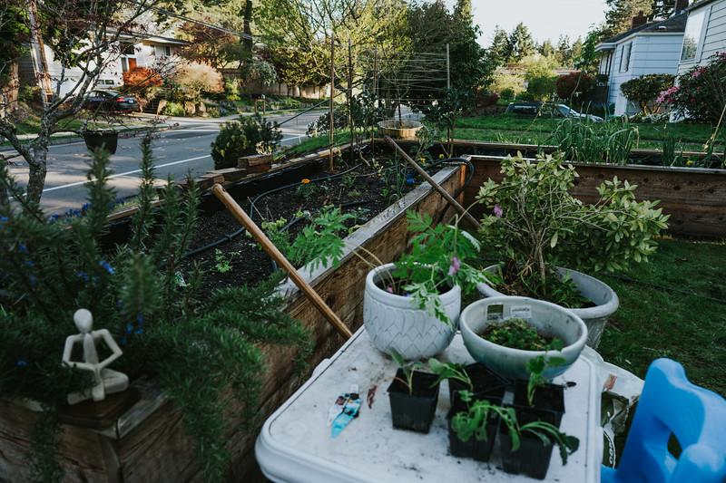 AprilAfternoon-backyard-16.jpg