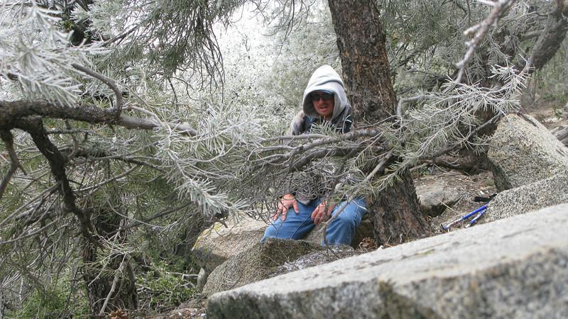 Nathan through the trees