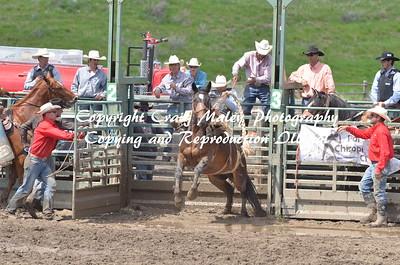 PERF SADDLE BRONC 06-06-15