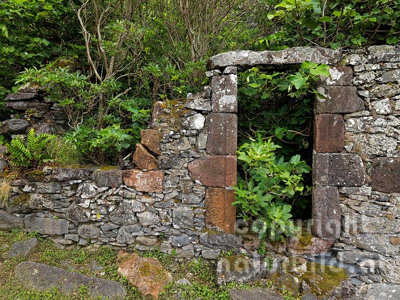 16AFL-4-57 - Steinerne Mauerreste einer Mühle