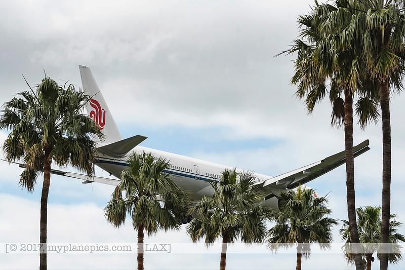 F20170219a105616_7981-avions cachés par palmiers-atterissage.jpg