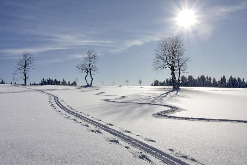 WINTER 13.jpg