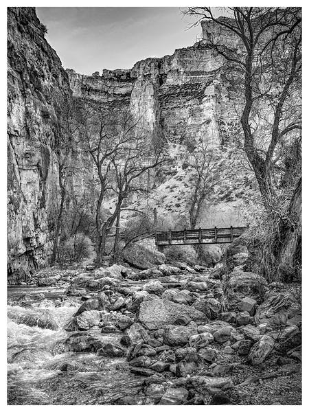 Foot Bridge    Black & White  Photography  Wayne Heim