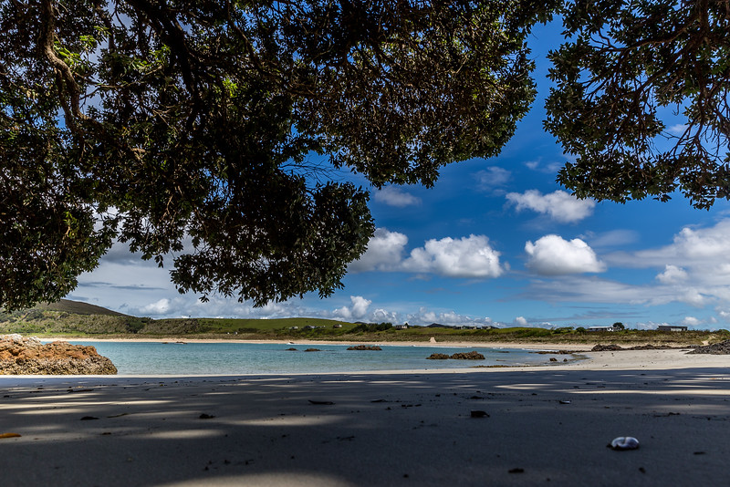 Waikato Bay
