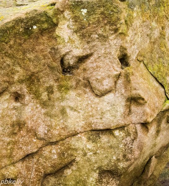 face in the rock 013013-1.jpg