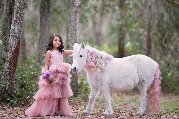 Unicorns Jan 2019 - VP
