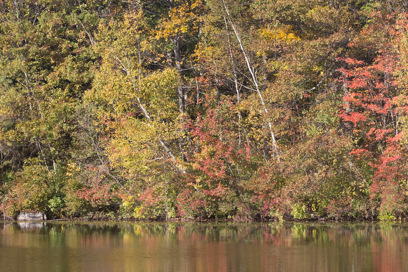 2012-10-13 09.51.42-1.jpg
