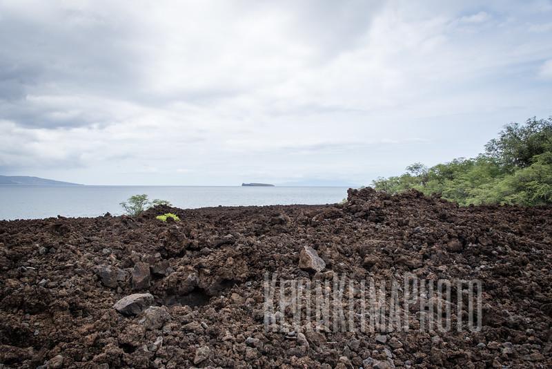 Maui2016-085.jpg