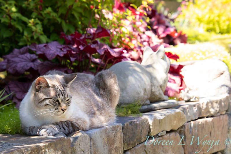 The Chartreuse Garden_1026.jpg
