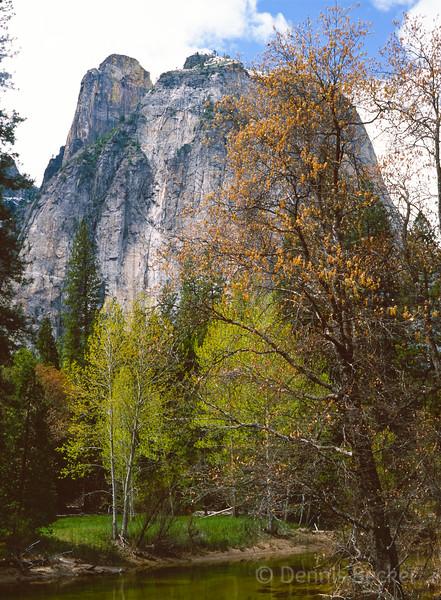 Yosemite - Cathedral Spires (2).jpg