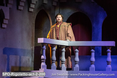 St Petersburg Opera Rigoletto Act 2  January 2020