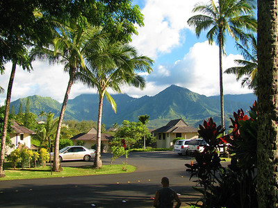 KauaiJax