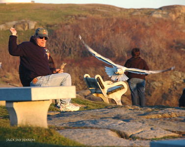 Nubble Lighthouse - People