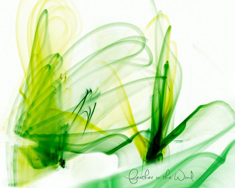 5D3_1157-Edit-Edit-4.jpg