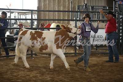 9-28-21 Tuesday Steer Show
