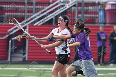 Albright Women's Lacrosse 2017