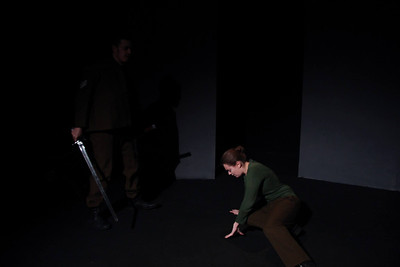 Titus Andronicus 2013