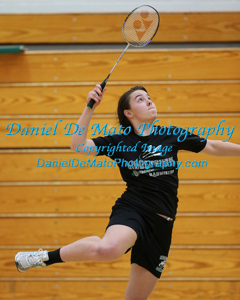 Suffolk County Boys and Girls Individual Badminton Championship 5-23-13