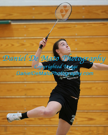 HIgh School Badminton