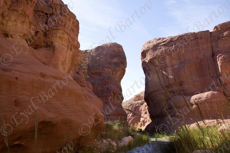IMG_1169 Zered wadi- Jordan.jpg