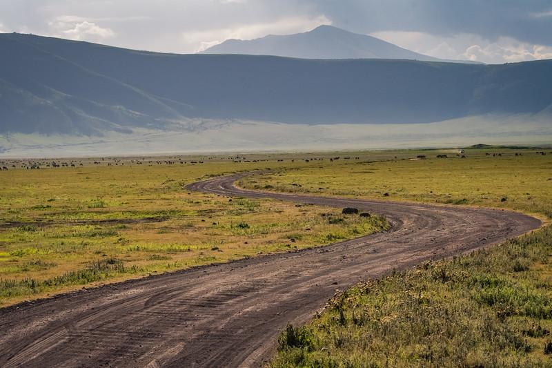 Tanzania_Feb_2018-41.jpg