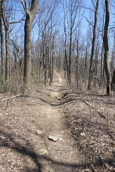 Ridge Trail - 3,340'