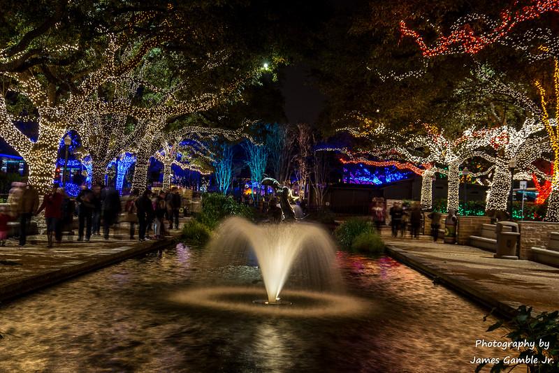 Houston-Zoo-Lights-2943.jpg