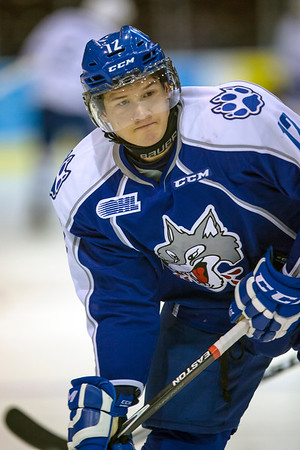 Sudbury Wolves at Mississauga Steelheads 20141114