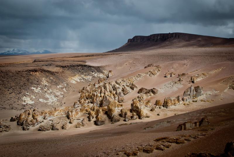 Atacama 201202 Salar de Tara (134).jpg