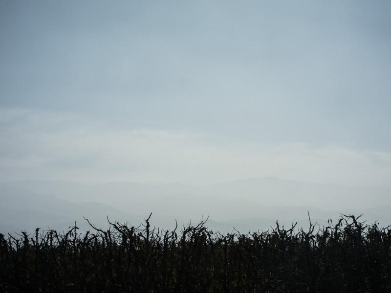 20131201-IMG_3446.jpg