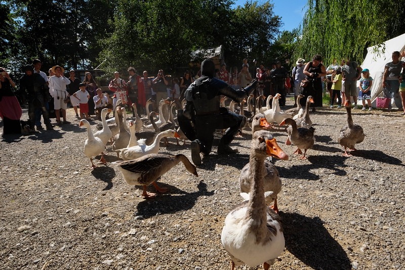 Kaltenberg Medieval Tournament-160730-102.jpg