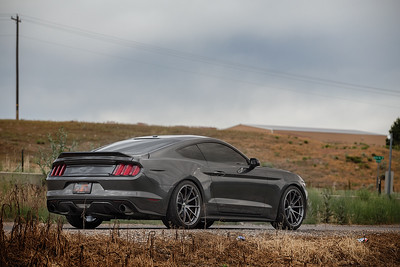 Mustang (06.16.16)