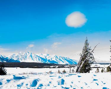 Jackson Hole Jan 2016