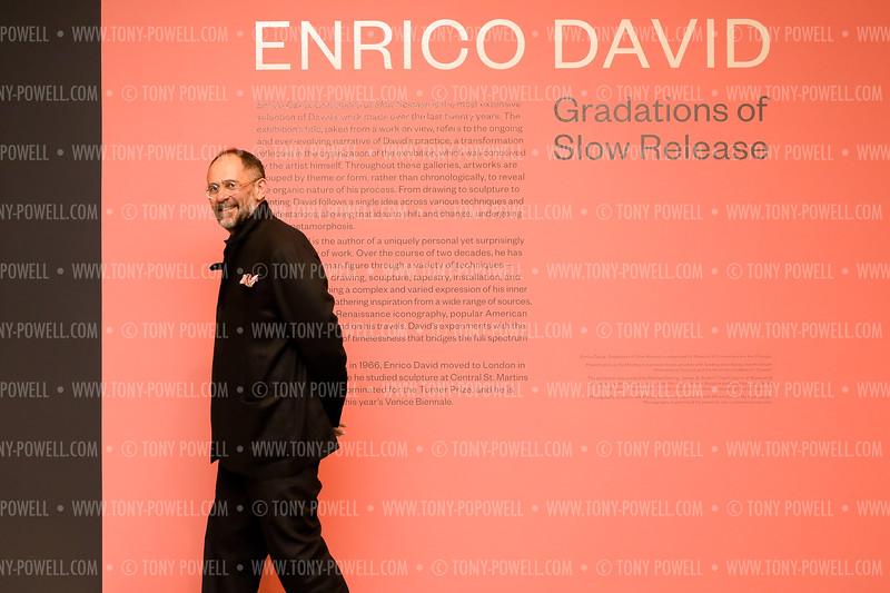 "Hirshhorn Museum Enrico David ""Gradations of Slow Release"""