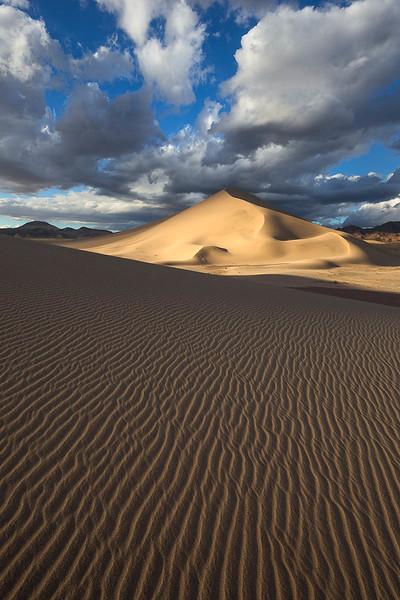 Spotlit Dunes