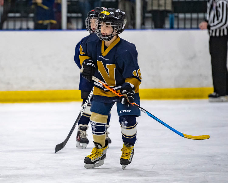2019-02-03-Ryan-Naughton-Hockey-36.jpg