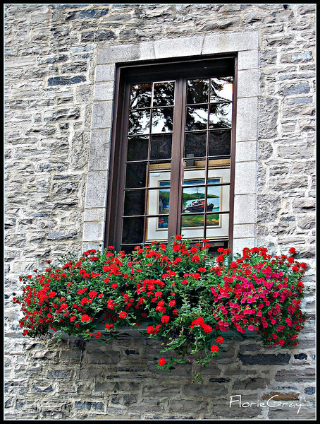 Summer Window, Quebec City   Copyright ©2009 Florence T. Gray. This image is protected under International Copyright laws and may not be downloaded, reproduced, copied, transmitted or manipulated without written permission.