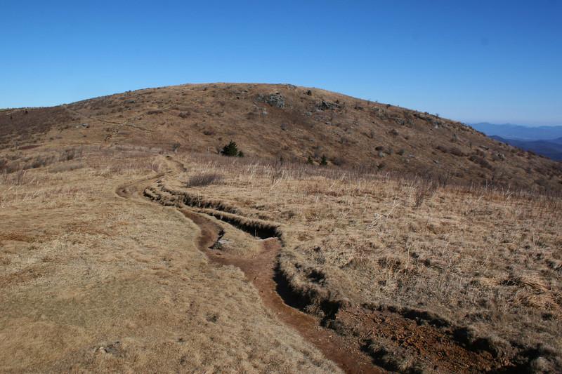 Art Loeb Trail -- 6,120'