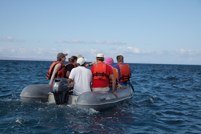 One of the two dinghies used to shuttle us from Queen of Galapagos to dry or beach landings.