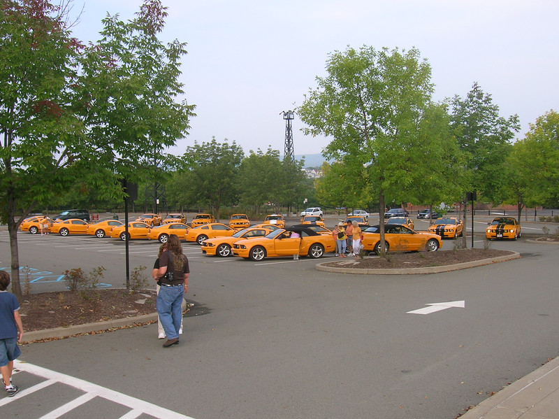 Coupes, 'verts, stripes, V-8's, V-6's, Shelbys, Saleens....all were represented.